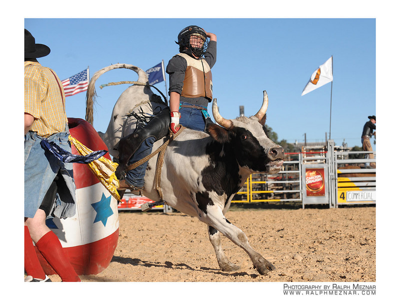 rodeo2009_17973