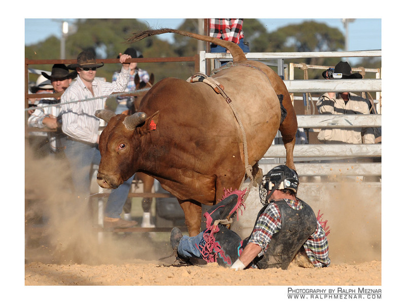rodeo2009_18011