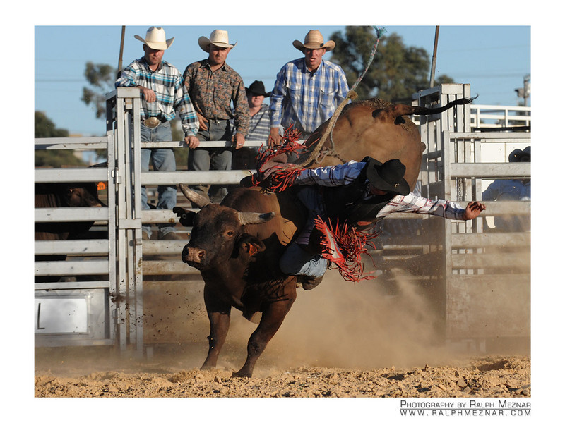 rodeo2009_18234