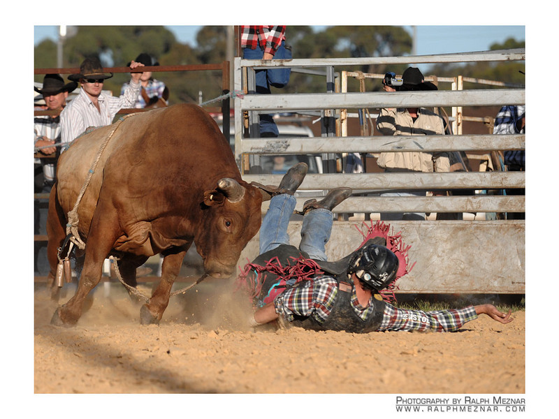 rodeo2009_18014