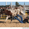 rodeo2009_17941