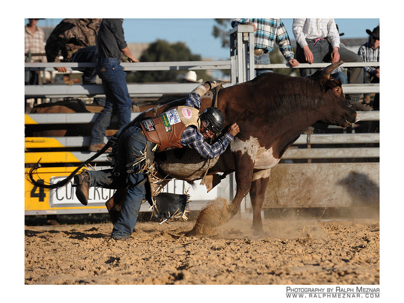 rodeo2009_18209