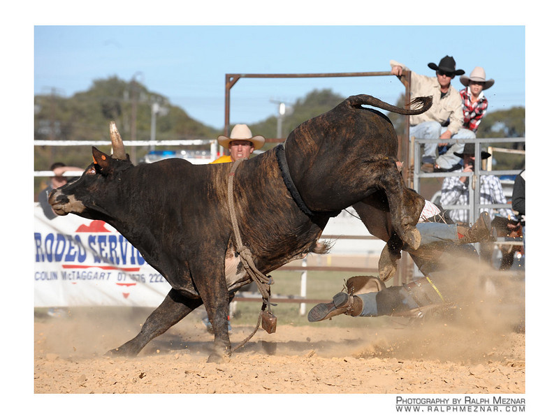 rodeo2009_17729