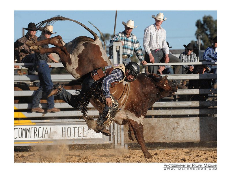 rodeo2009_18211