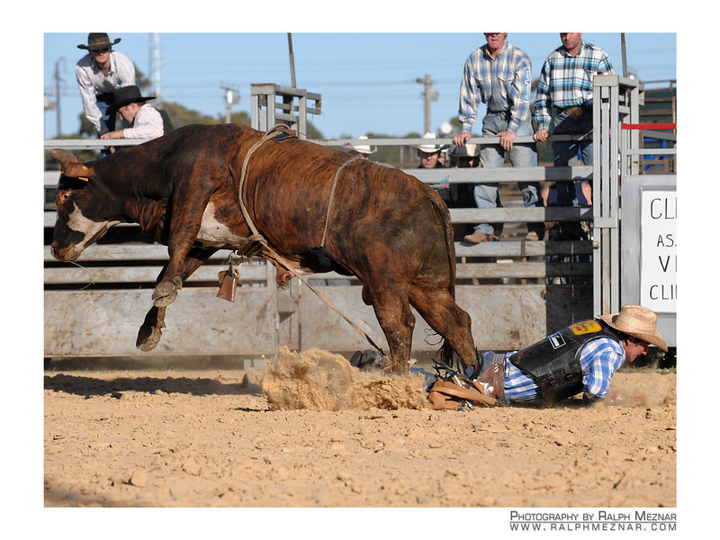 rodeo2009_17708