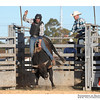 rodeo2009_18020