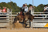 rodeo2011_9833