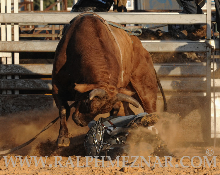 rodeo2011_9908