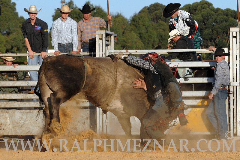 rodeo2011_9848