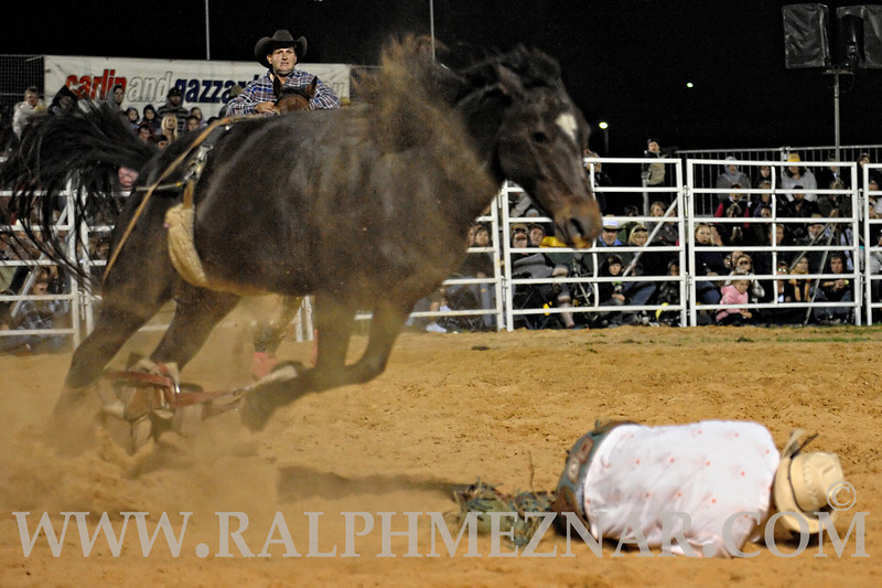 rodeo2011_10283