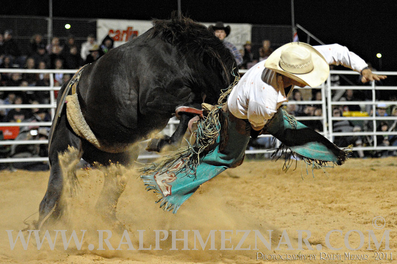 rodeo2011_10286