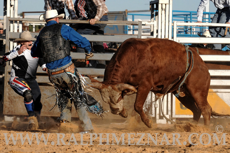 rodeo2011_9657