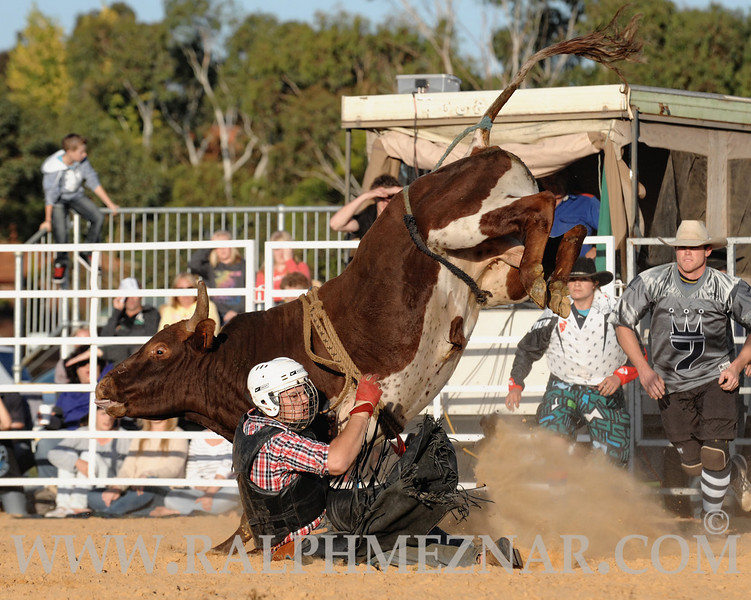 rodeo2011_9703