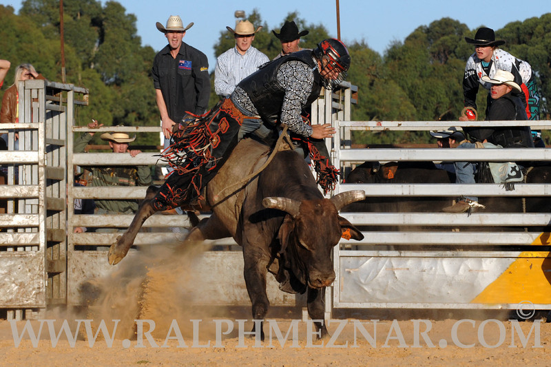 rodeo2011_9843