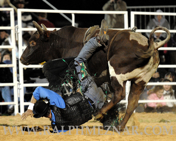 rodeo2011_10315