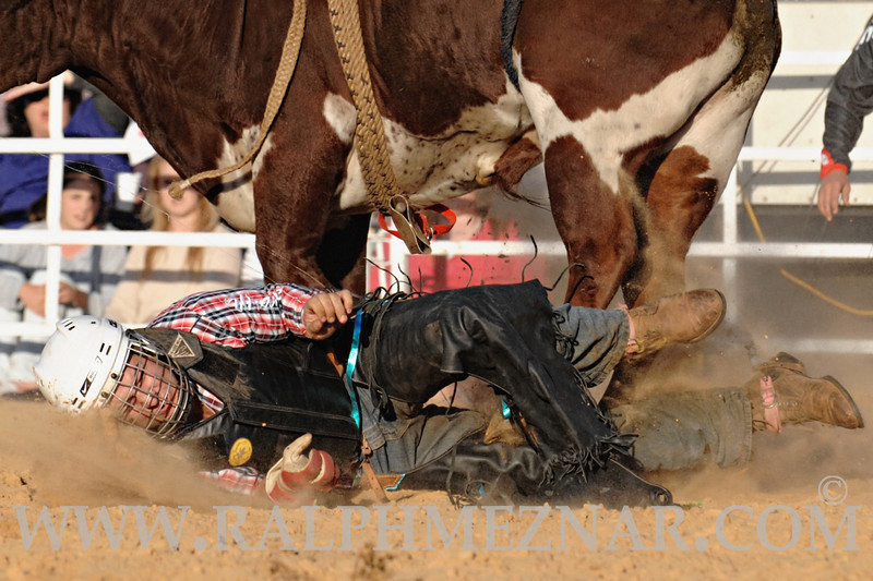 rodeo2011_9704