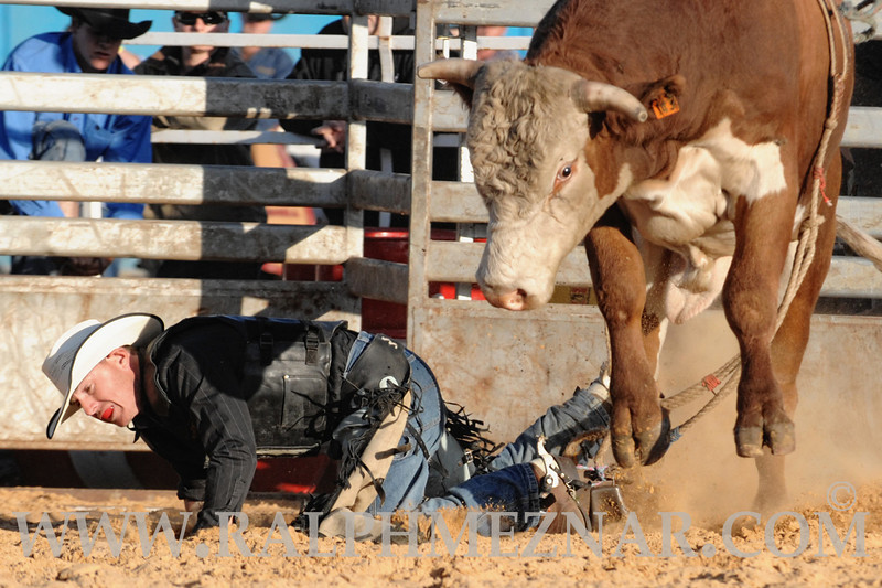 rodeo2011_9686