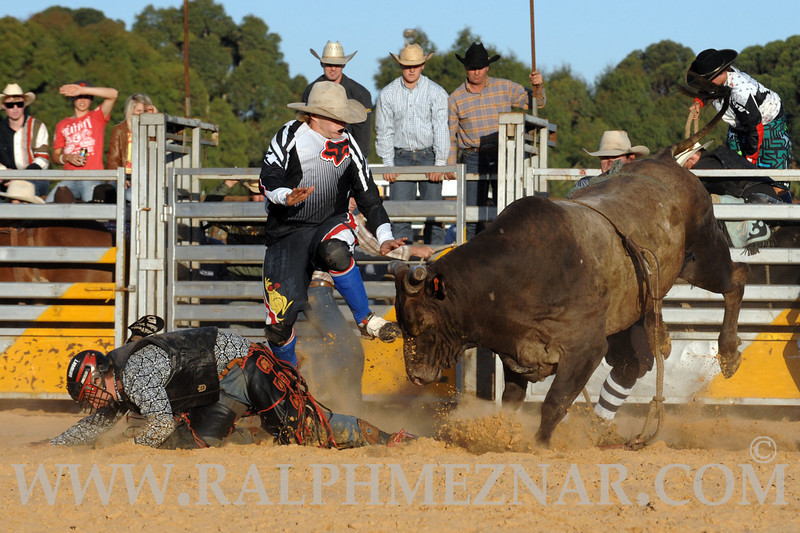 rodeo2011_9854