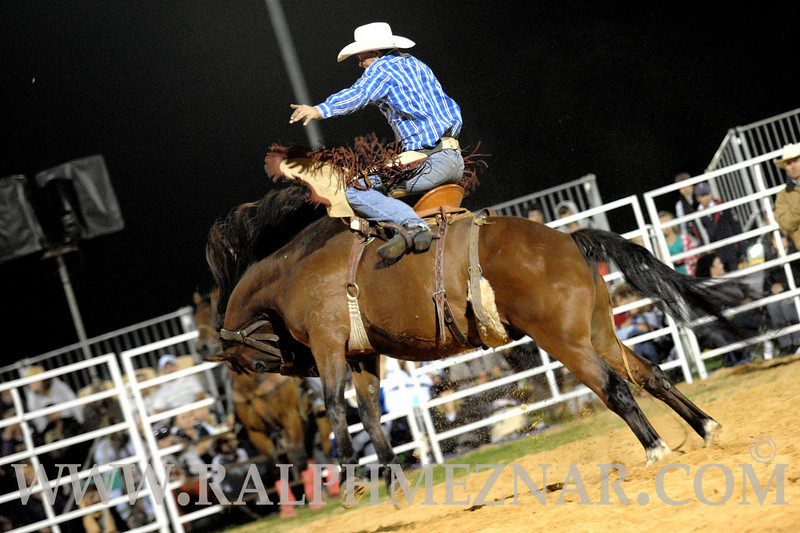 rodeo2011_10387
