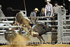 Bull Rides : 4 galleries with 478 photos