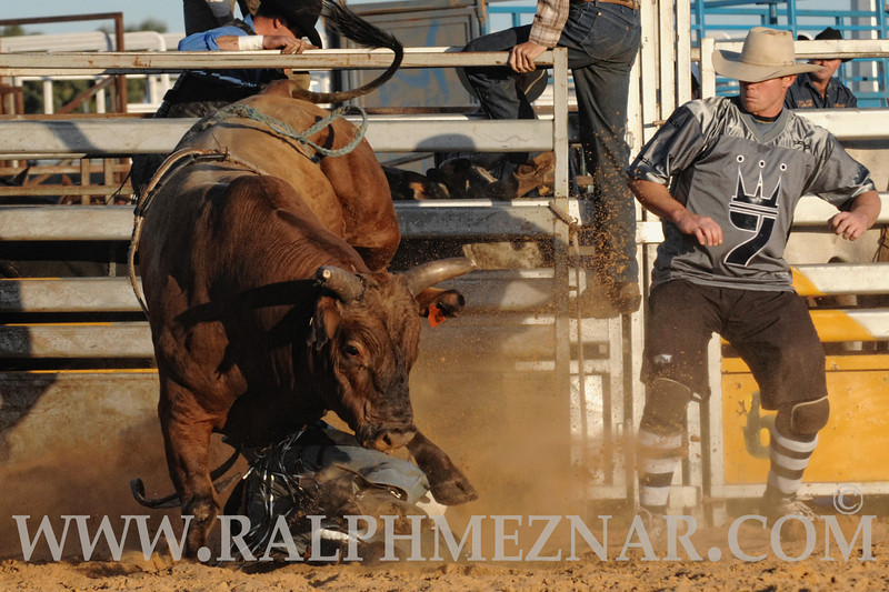 rodeo2011_9909
