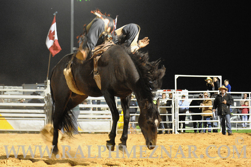 rodeo2011_10260