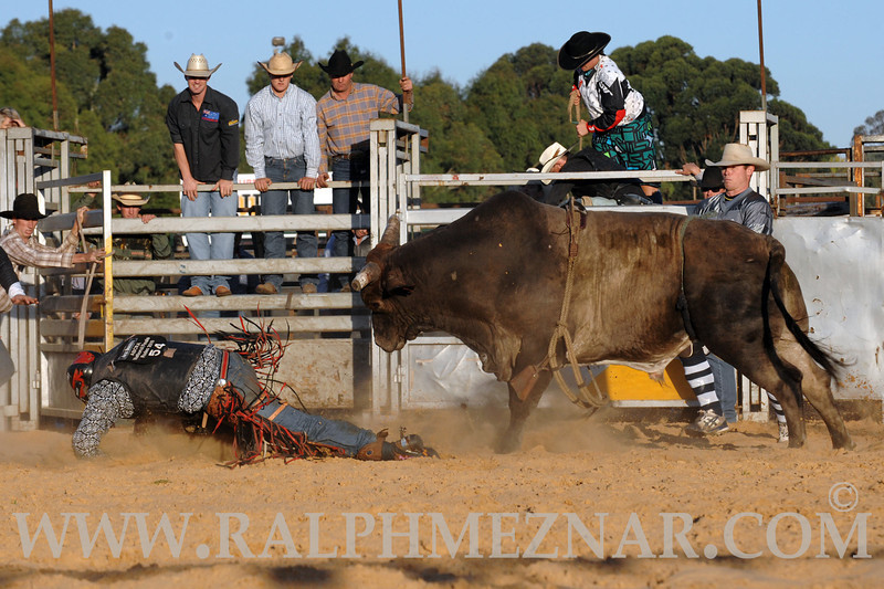 rodeo2011_9853