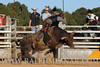 rodeo2011_9842