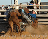 rodeo2011_9902