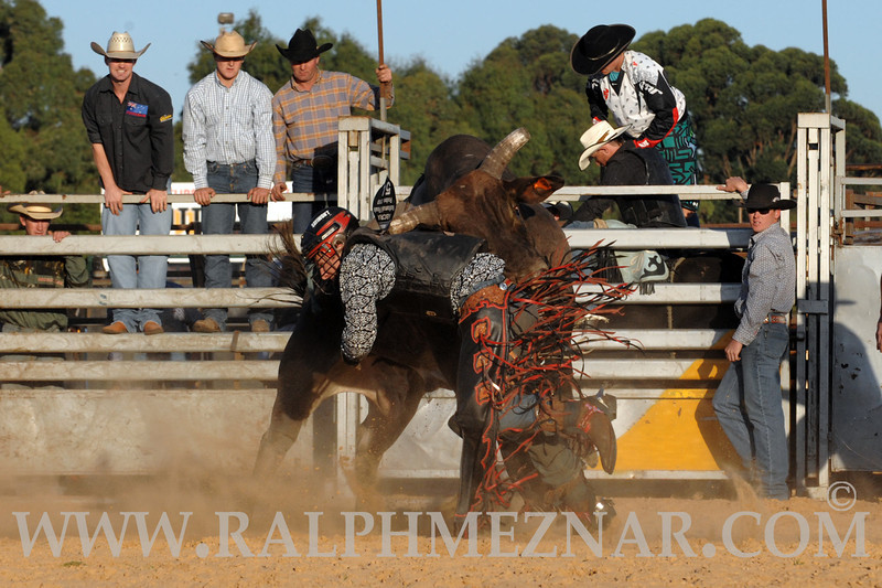 rodeo2011_9850
