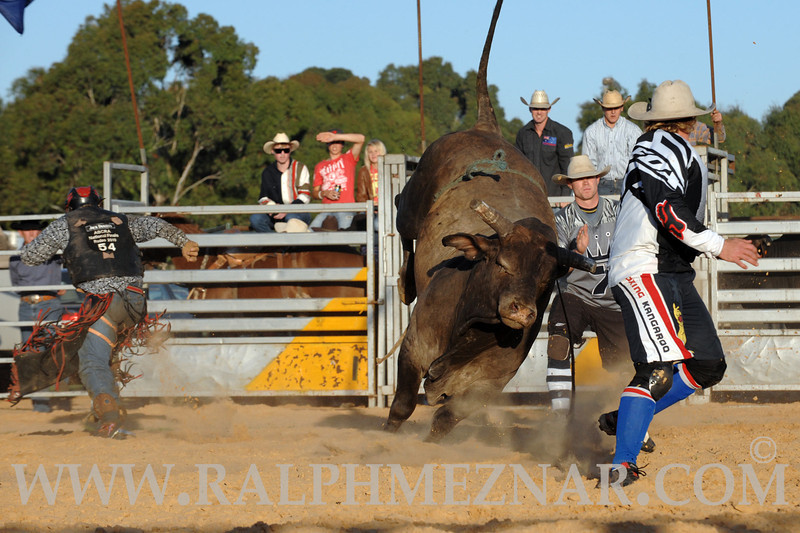 rodeo2011_9859