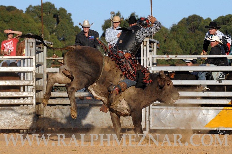 rodeo2011_9841