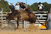 rodeo2011_9845