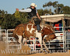 rodeo2011_9813