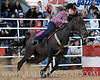 rodeo2011_10144
