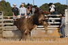 rodeo2011_9846