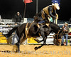 rodeo2011_10371