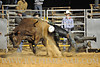 rodeo2011_10528