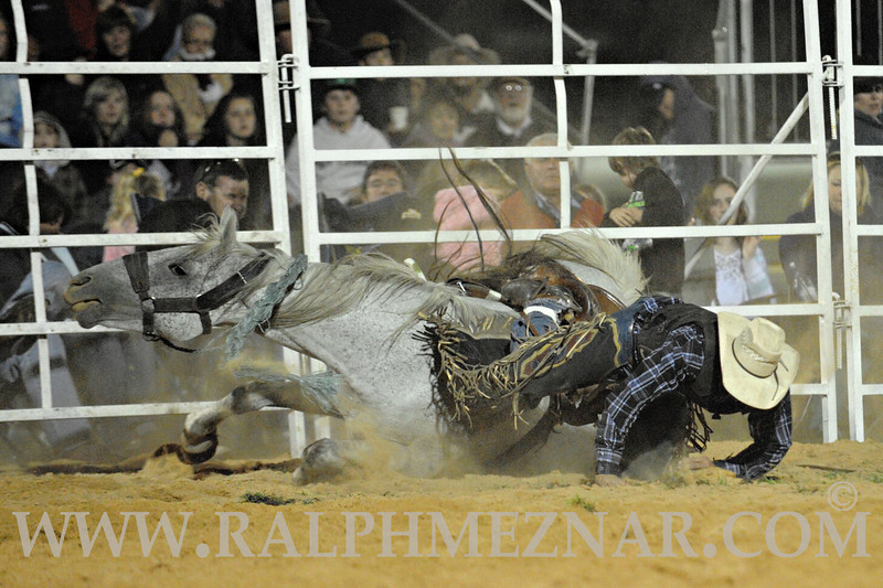 rodeo2011_10458