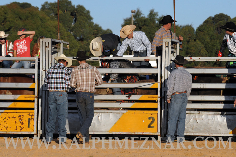 rodeo2011_9829