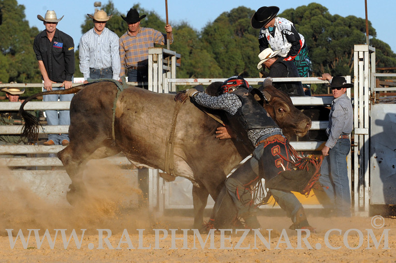 rodeo2011_9849