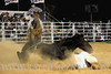 rodeo2011_10287