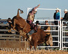 rodeo2011_9738