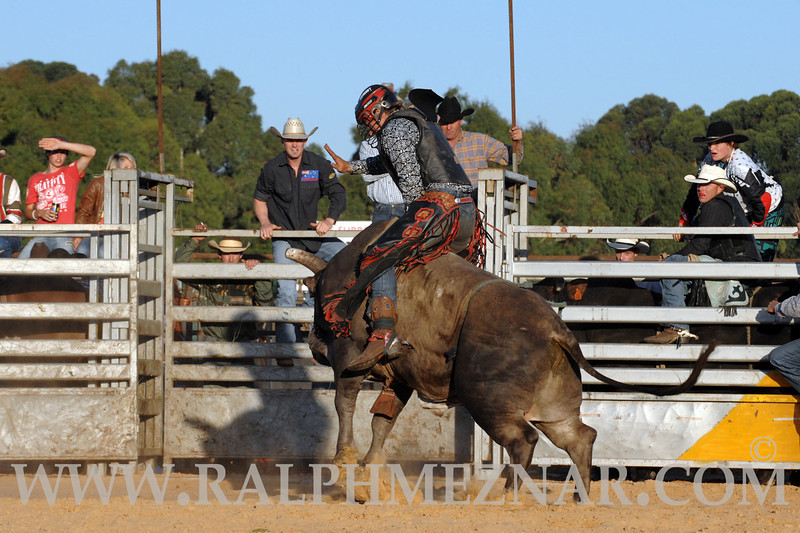 rodeo2011_9839