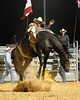 rodeo2011_10255