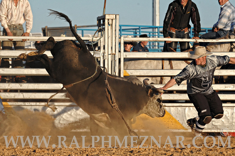 rodeo2011_9963