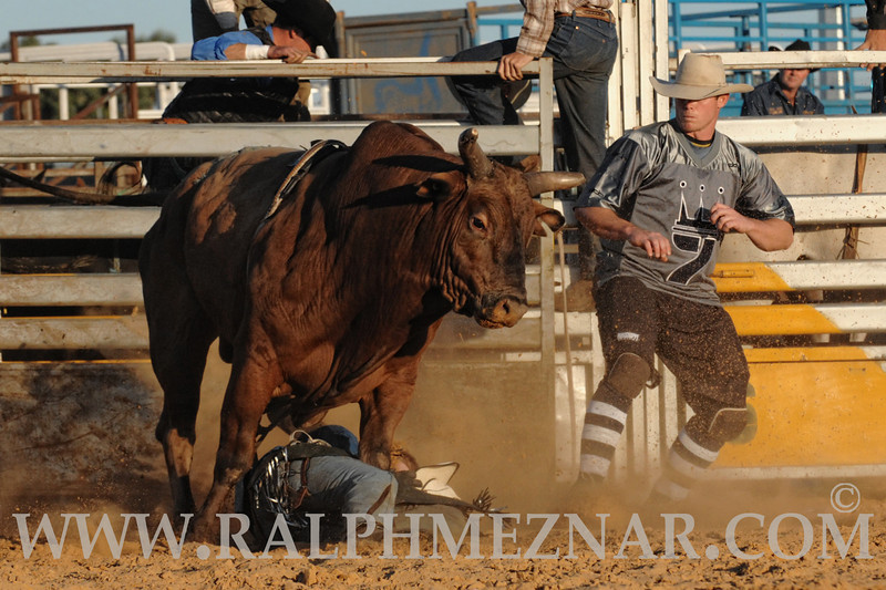 rodeo2011_9910
