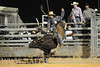 rodeo2011_10617