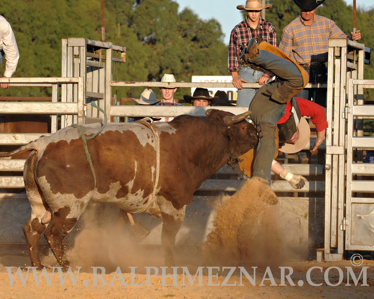 rodeo2011_10014