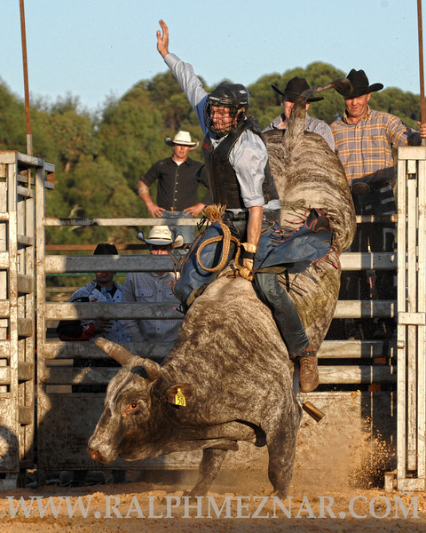 rodeo2011_9971